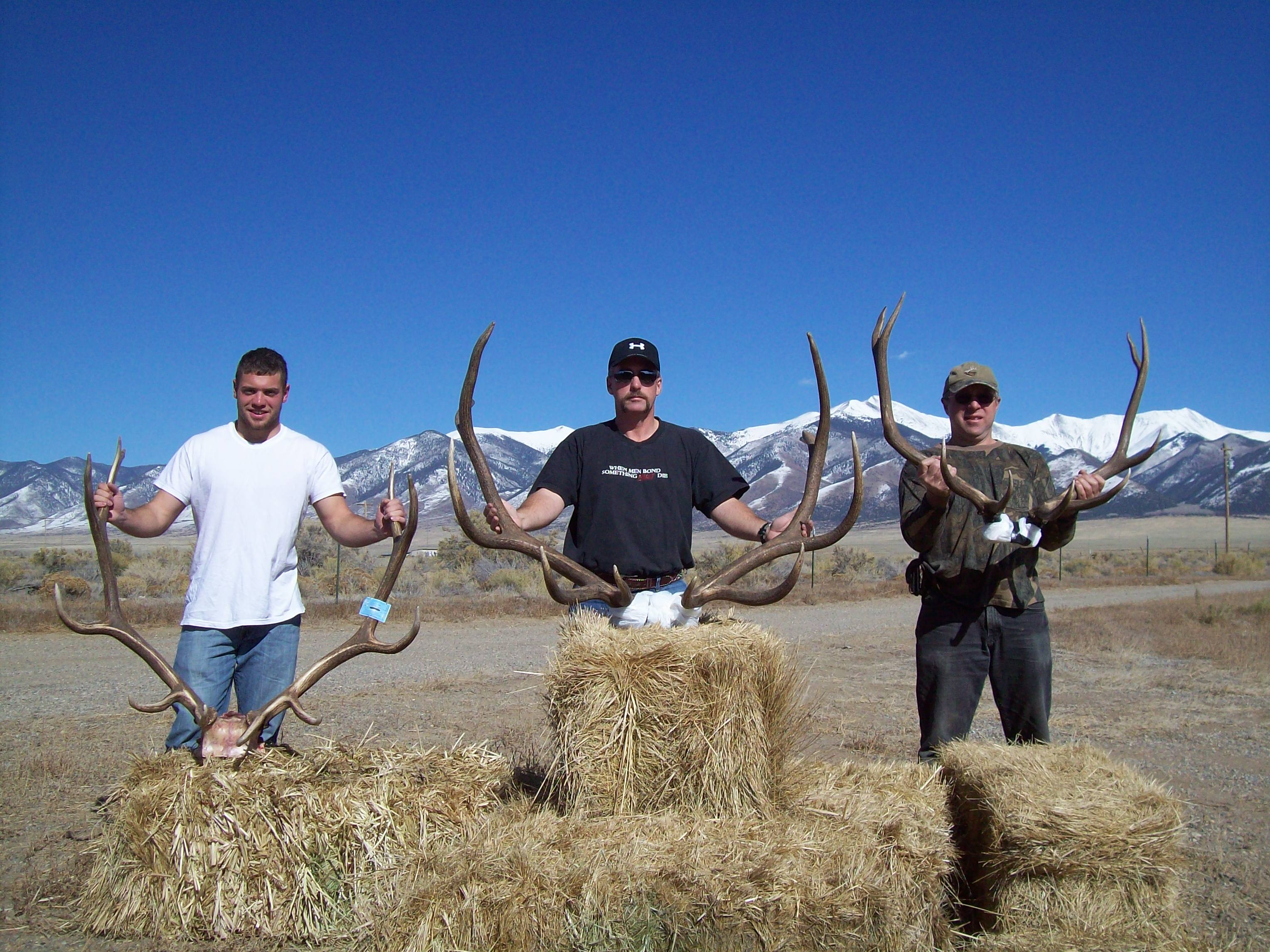 Colorado Hunting