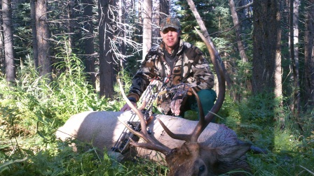 Colorado elk hunts